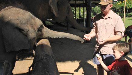 playing-with-elephants-in-chiang-mai-1-min