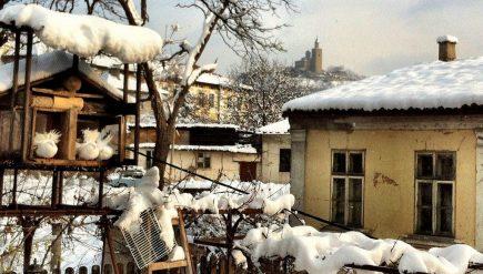white-christmas-in-bulgaria-1